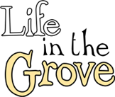 LIFE IN THE GROVE